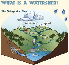 A Watershed: The Making of a River
