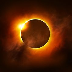 Happy Eclipse Day from Naples Florida Vacation Homes!
