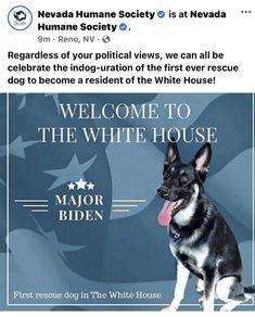 Mans Best Friend, Best Friends, Political Views, Humane Society, Rescue Dogs, Politics, Celebrities, Beat Friends, Bestfriends
