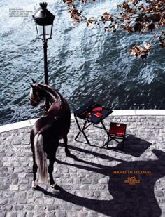 horses in hermes ads - Google Search