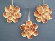 Sea Shell Floret Ornament / Set of 3 by judystephenson on Etsy, $29.00