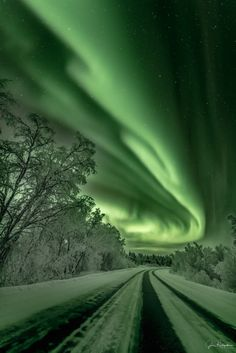 Nature Photos, Northern Lights, Freedom, Simple, Green, Photography, Travel, Animals, Beautiful