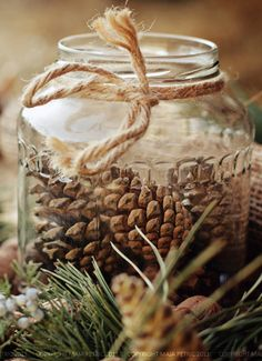 Jar with pinecones