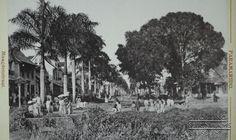 Straatbeeld Maagdenstraat. Datum: Locatie: Paramaribo, Suriname Vervaardiger: Eugen Klein Inv. Nr.: SSM-0392-09 Fotoarchief Stichting Surinaams Museum