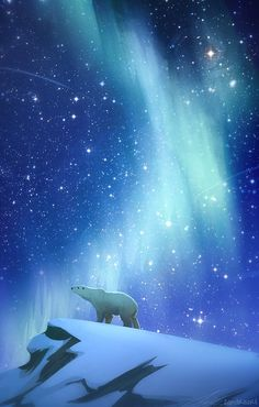 / dancing lights / polar bear / zandraart / illustration by alexandra kern / Aurora Borealis, Illustrations, Illustration Art, Polar Bear Illustration, Polar Bear Drawing, Polar Bear Tattoo, Wallpaper Animes, His Dark Materials, Bear Art