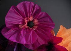 amapola de papel de seda-vía-AHDO3