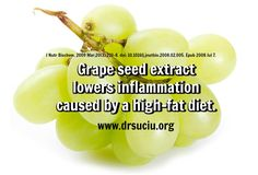 Grape seed extract lowers inflammation caused by a high-fat diet, reducing the risk of heart disease and other disorders related to inflammation. Inflammation Causes, Health Heal, Grape Seed Extract, High Fat Diet, Cardiovascular Disease, Cantaloupe, Healing, Fruit, Food