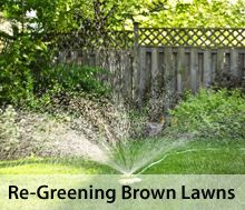 How to Revive a Brown Lawn. Lawn And Garden, Home And Garden, Lawn Care Business, Lawn Care Tips, Green Lawn, Condos For Sale, Yard Landscaping, Estate Homes, Grass