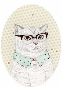 Fancy Cat - indi maverik