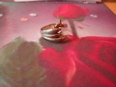 Silver Dolphin Ring Triple Wrap Dolphin by NAESBARGAINBASEMENT