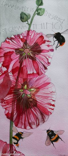 Hollyhocks - Sam Cannon - 'How lovely is the silence of growing things' - author…