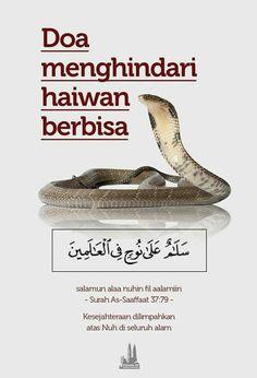 Duaa preventing meeting poisonous animals Doa Islam, Allah Islam, Islam Quran, Pray Quotes, Humor Quotes, Qoutes, Islamic Quotes Wallpaper, Love In Islam, Beautiful Prayers