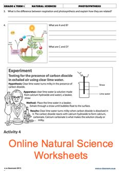 Grade 8 Online Natural Science Photosynthesis. For more worksheets visit www.e-classroom.co.za!