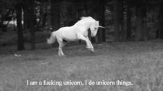 gif love LOL photography art photoshoot funny couple girl quote Black and White fashion Cool music beautiful movie hippie style hipster photograph indie b&w boy happiness unicorn photografy indie gif hippster Fantasy Creatures, Mythical Creatures, Animated Unicorn, Animated Gif, Scotlands National Animal, Pretty Black, Black And White, Gifs, Unicorn Horse