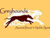 Celtic/Modern Greyhound