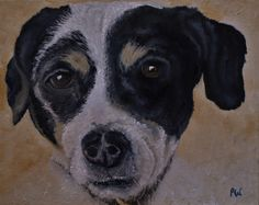 Paul Williams - A selection of dog portraits. Dog Portraits, Fine Art, Artwork, Animals, Work Of Art, Animaux, Animal, Animales, Visual Arts