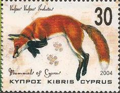 Red fox postage stamp from Cyprus, issued 2004.