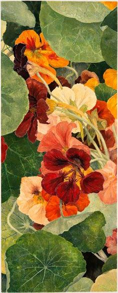 "wasbella102: ""Cressida Campbell - Nasturtiums, unique woodblock print, watercolour paint on stonehenge paper """