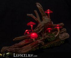 LUMYCELIUM - let you slip into an imaginary atmosphere. Fantasy lamps with lighting mushrooms. Welcome to the fantasy world of Lumycelium! Mushroom Crafts, Mushroom Art, Giant Mushroom, Flower Fairy Lights, Mushroom Lights, Led Light Design, Amazing Decor, Artisanal, Hobbies And Crafts