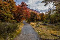Photograph Ways of Patagonia by Bob Machado on 500px