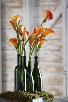 Google Image Result for http://www.elegala.com/images/galleries/flowers/wedding_flowers-orange_calla_lily-green_bottles.jpg