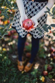 Apple Picking- Apple
