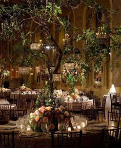 This is beautiful ch happily ever after pinterest wedding indoor garden wedding trees with mini chandeliers gorgeous diy wedding planner with di wedding ideas and tips including diy wedding tutorials and how to junglespirit Choice Image