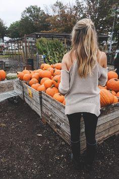 //Pinterest : iamarunner15 ♕ Fall Pictures, Fall Photos, Fall Pics, Fall Winter Outfits, Autumn Winter Fashion, Autumn Fall, Autumn Leaves, Fete Halloween, Trendy Halloween