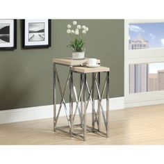 Natural Reclaimed-look Chrome Metal Plant Stand (Set of 2)