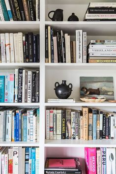 A book lover's dream — and the spines aren't even color-coordinated!