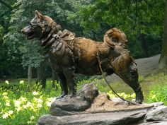 Balto - Hero of the Nome Serum Run | Australian Dog Lover - Monument in New York's Central Park dedicated to the sled dogs and mushers who took part in the serum run, topped by a bronze statue of Balto (designed by Frederick Roth).