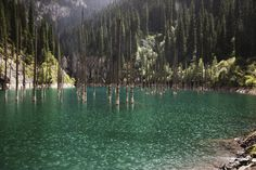 """Lake Kaindy; near Almaty, Kazakhstan - The lake was created when a landslide led to a natural dam in the region, causing the area that is now the lake to fill up with rainwater. The spruce trees in the area were covered by the lake, but because of the cold water temperatures, the green pines still remain, creating a """"sunken forest"""" effect."""