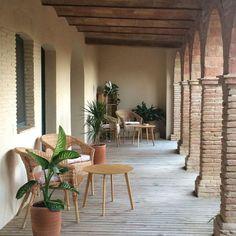 Estrenamos terrazas en las habitaciones nuevas de @mdelaroda Patio, Outdoor Decor, Plants, Home Decor, Home, Decks, San Juan, Homemade Home Decor, Yard