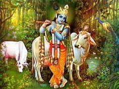 God Krishna with Flute & Cow Wallpaper Download