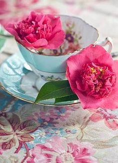 "♫ ""I love flowers filling a tea cup! X ღɱɧღ Teacup Flowers, Love Flowers, Teal Coral, Turquoise, Vintage Cups, Mad Hatter Tea, Tea Cakes, Tea Accessories, Serving Dishes"