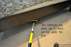 How to clean pet hair from carpet - Part II. This time using a window squeegee and a mop handle you can 'rake' your entire room clean! Window Squeegee, Professional Cleaning Services, Pet Hair Removal, Cat Hair, Animal Projects, Carpet Stairs, New Carpet, Green Cleaning, Persian Carpet