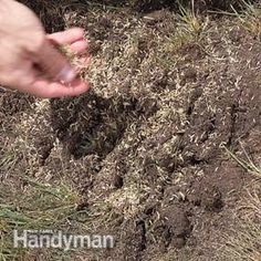 Follow these tips to defend your turf from crabgrass and be one step closer to having a perfect lawn