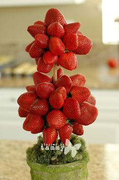 Fresh Strawberry Topiary- serve with a fruit yogurt dip. So easy and a beautiful presentation