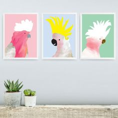 Take flight with these fanciful Aussie parrots from our 'Fancy Feathers' wall art print set.  Pack includes 3 x ready-to-frame prints.  Frames not included.  Please allow for slight colour variations from screen to print.