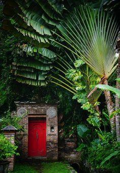 Advanced small back garden paving ideas just on kennys landscaping design Tropical Garden Design, Tropical Backyard, Tropical Landscaping, Tropical Houses, Backyard Landscaping, Tropical Gardens, Backyard Designs, Small Back Gardens, Balinese Garden