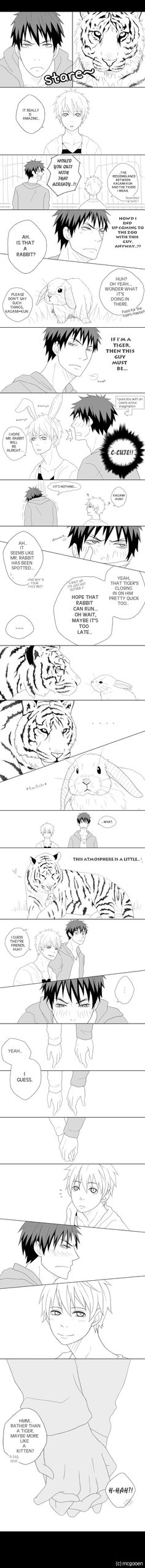 KnB - Tigers and Rabbits by Mcgooen.deviantart.com on @deviantART - Kagami x Kuroko