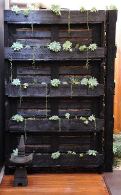 Painted pallet (pictured here with succulents) would make a gorgeous flower garden; if freestanding for use as a wall or divider, then hooks hung on the slats on the other side could hold flat-backed or other small containers for flowers or a re-purposed mailbox for small garden tools & gloves or artwork, etc. Lots of possibilities.