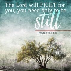 The Lord will fight for you; you need only to be still. Bible Verses Quotes, Bible Scriptures, Faith Quotes, Bible Book, Godly Quotes, Scripture Art, Religious Quotes, Spiritual Quotes, Exodus 14 14