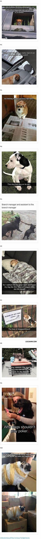 Lol my life   www.FactToss.com