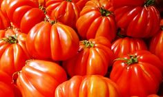 Use it up: how to use up leftover tomatoes so they don't go to waste (Reduce Food Waste)