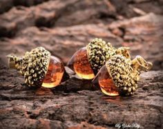 Holiday gift Acorn amber necklace Autumn Fall by EightAcorns