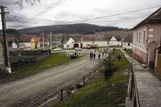 Bârghiș - Căutare Google Train, Google, Zug, Strollers