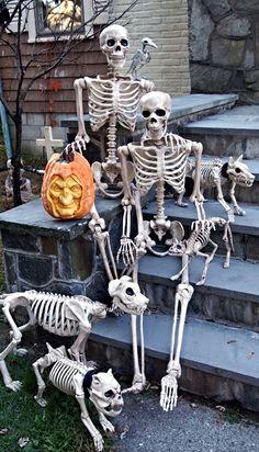 Halloween Skeleton.138 Best Skeleton Posing Ideas Images In 2017 Halloween