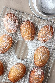 Vanilla Bean Madeleines: delicate cake-like cookies sprinkled with powdered sugar Tea Cakes, Cupcake Cakes, Cupcakes, Baking Recipes, Cookie Recipes, Dessert Recipes, Veggie Recipes, Healthy Recipes, Just Desserts