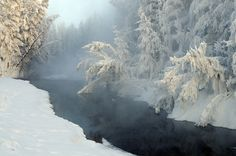 A stream in Tomtor, Russia, that never freezes because of the hot springs. The vapor, coming out continuously, freezes instantly over the trees all around, creating very bizarre shapes. Томтор, as it's called in Russian, is a small town situated inside the Pole of the Cold, the world's coldest inhabited place, where the January's average temperature is -50°C.
